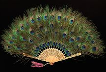 Peacock/Peahen