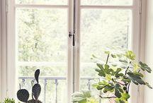 Inredning fönster