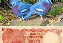 uang ri