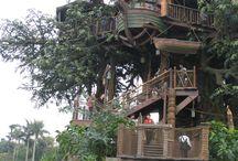Case în copaci
