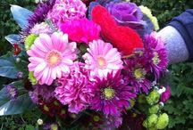 BUKIETY / Bukiety na wszystkie okazje!   Kwiaty w naszym życiu odgrywają niezwykle ważną rolę. Towarzyszą nam od zawsze, swym pięknem uświetniają zarówno poważne uroczystości, jak i drobne wydarzenia.Kwiaty pozwalają nam okazywać różne uczucia, są wyrazami miłości, szacunku, uwielbienia, dobrych życzeń i radości.