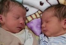 New Life Surrogacy Blog / Surrogacy,Egg donation, parenting, IVF, Gender Selection,HIV parenting, In Vitro Fertilization