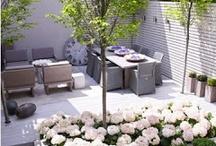 Outside Living Space