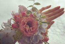 jungwon / flower