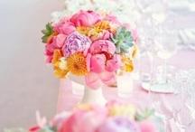 Flower / by Manar AlMajedi