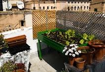 huertos en los tejados / huerta urbana, hurta vertical, macetas comestibles, reciclaje,