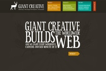 cool web design / by Erika Conner