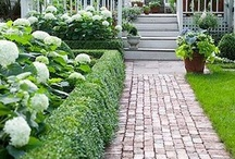 Garden Inspiration / by Carla _Au
