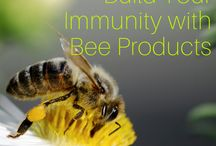 Health Benefits of Bee Products / Throughout history Bee Products (raw honey, propolis, bee pollen,royal jelly, etc) have been hailed for their numerous health benefits.