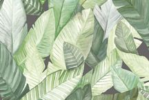 Tropical leafs and palms
