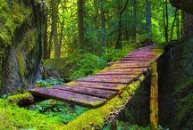 idyllic surroundings