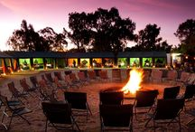 Dining Experiences / A camp with no pretences is best exemplified by the communal area of which the large fire area is central to Chiefs Tented Camp and also the highlight of every evening. its an unforgettable dining experience