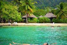 Bora Bora / Tahiti / By far the most beautiful place I've ever had the pleasure of visiting!