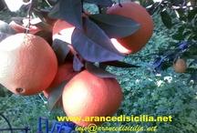 Arance a pintereest / http://www.youtube.com/watch?v=ZKLlXXs2mpc