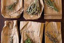 food - only herbs