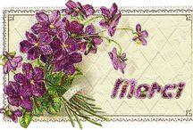 MERCI - THANK YOU -