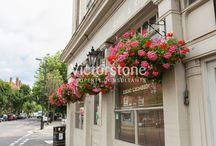 Angel / #Angel #London #Victorstone  www.victorstone.co.uk