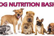 Dog Food Articles