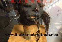 Fake Shrunken Heads