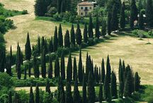 Tuscany / Tuscan landscapes and towns