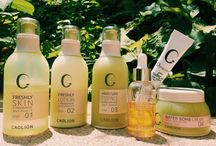 Travel with Caolion