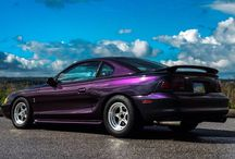 Rare Colors Mustang Registry / All the rare, low production number mustangs FINALLY have their own registry to call home! www.rarecolorsmustangregistry.com