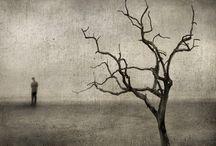 Image - Photography