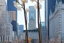 Public Art Fund: Nature