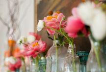 Jamie's Wedding / by Breanne Nowicki