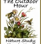 nature study  / by Rhonda Stuart