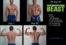 Body Beast Results / by Renee Robinson