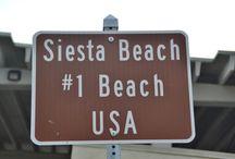 Sarasota, Florida / by Rosetta Johnston