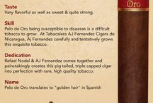 Infographic / Cigar Infographics