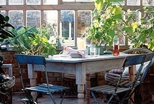 Conservatory   Serres