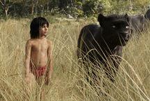 The Jungle Book / The Jungle Book