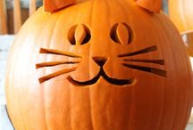 Pumpkin carving / by Shelley Cole