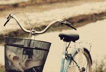 *bikes* / by Marley Judd