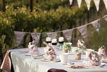 Eco Chic Baby Shower