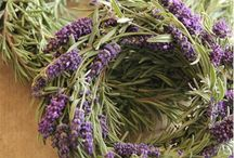 Lavender / What to do with all that Lavender? Harvest, craft, bake, bottle or sew lavender inspired projects. DIY with Lavender.