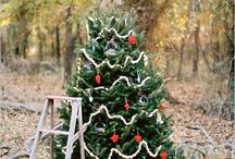 Christmas shoot / by The Tanimoto Trio