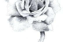 Transfer - Kwiaty