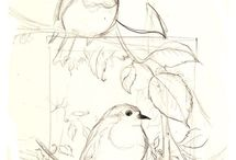 Pen drawings / Pen drawings
