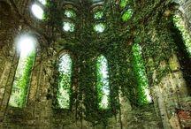 Nádhera v ruinách