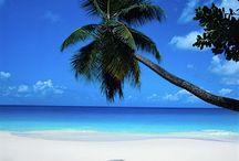 Florida | Beaches