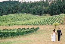Wine Country Wedding / by ONEHOPE Weddings