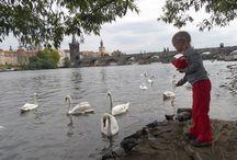 TOP ATTRACTIONS FOR KIDS IN PRAGUE / #prague#family#kids#czech#fun#familytravel