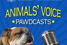Ontario SPCA / Pawdcasts with information about Pets, Adoption, Animal Welfare, Pet Ownership http://ilovemydogmorethanmykids.com