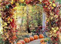 Осень фотосессия