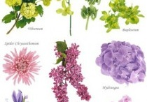 Amazing Floral Centrepieces / Ideas for Interesting Floral Centrepieces