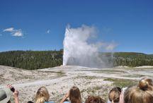 Yellowstone - Crónica de la Tierra viva